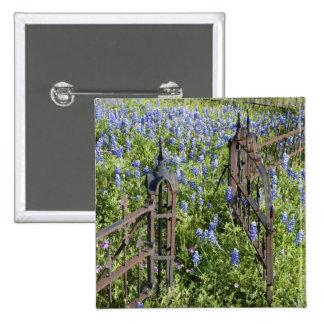Bluebonnets and phlox surrounding cemetery gate pinback button