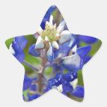 Bluebonnets de Tejas Calcomanías Forma De Estrellaes Personalizadas