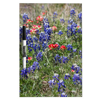 Bluebonnets de Tejas y Wildflowers de la brocha Pizarra