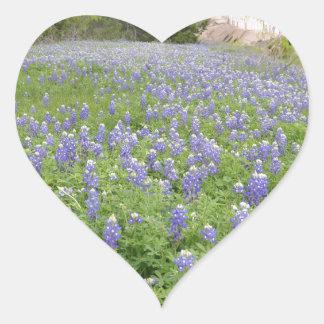 Bluebonnets Field.jpg Heart Sticker