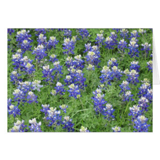 Bluebonnets in a field card