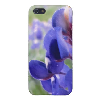 Bluebonnets - iPhone 4 Speck Cover For iPhone 5