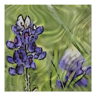 Bluebonnets on Glass Poster