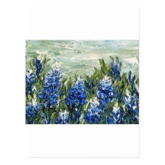 Bluebonnets Postcards