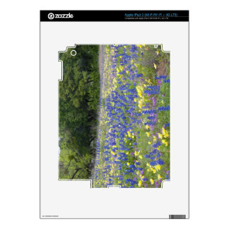 Bluebonnets, primrose, and phlox decal for iPad 3