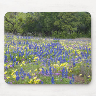 Bluebonnets, primrose, and phlox mouse pad