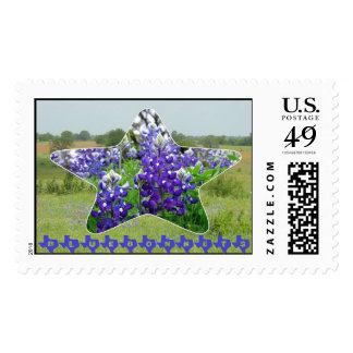 Bluebonnets Stamp