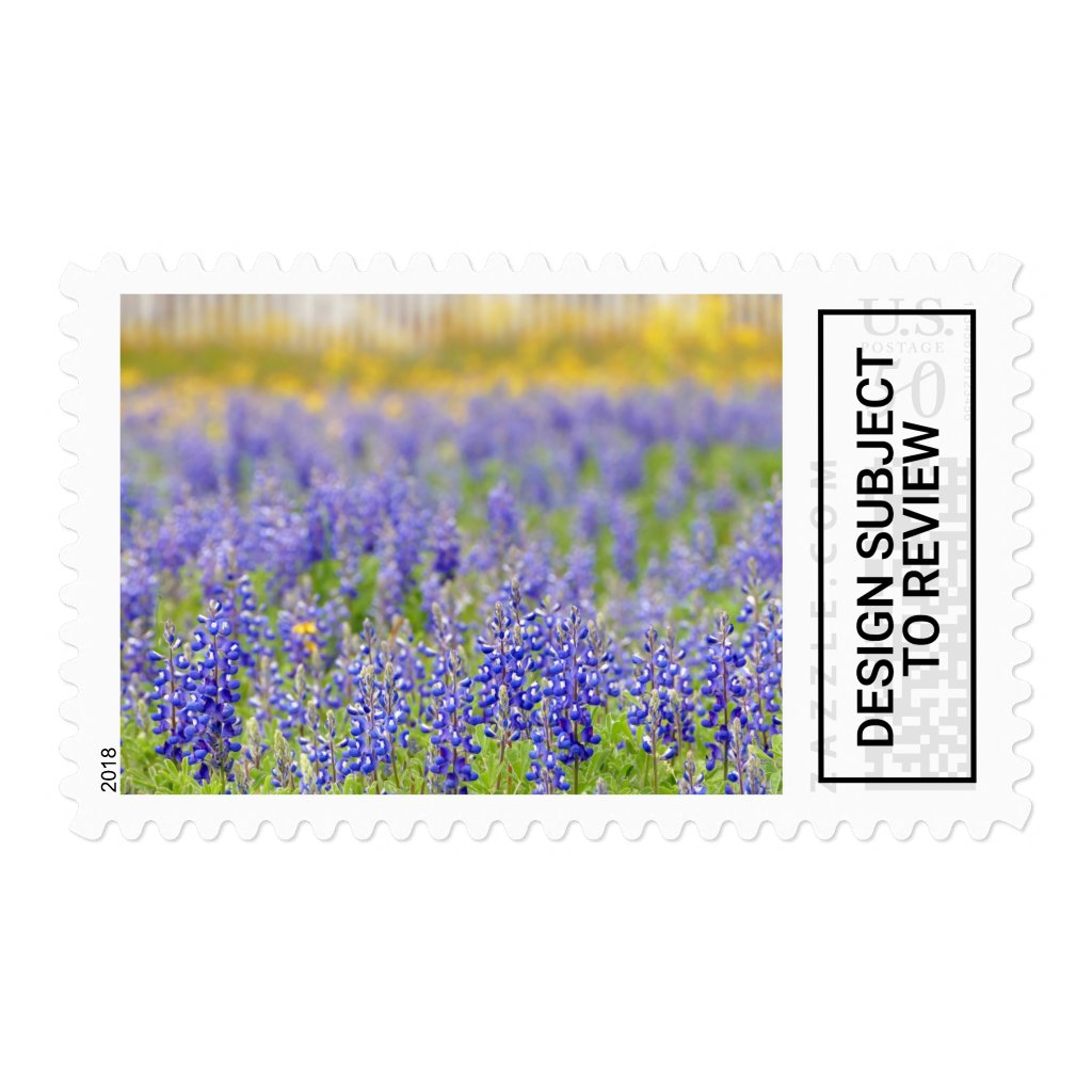 Bluebonnets, Texas State Flower Postage