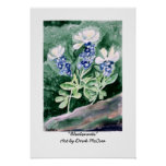 Bluebonnets Watercolor Painting Poster Print