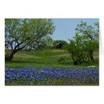 Bluebonnets y una tarjeta de nota vieja del graner