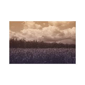 Bluecorn Blues Canvas Print