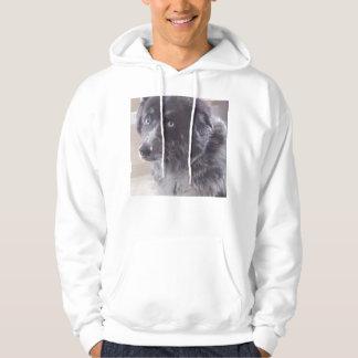 bluedog hoodie