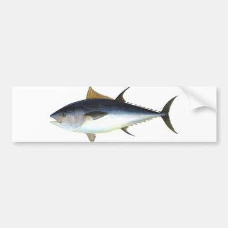 Bluefin Tuna illustration Bumper Sticker