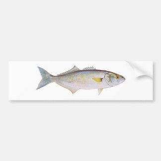Bluefish Car Bumper Sticker