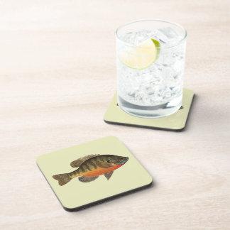 Bluegill Bream Drink Coasters