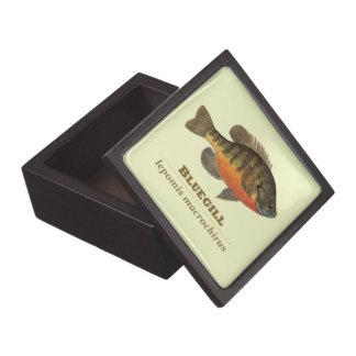 Bluegill Bream Fishing Keepsake Box