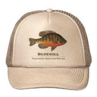 Bluegill Bream Fishing Trucker Hat