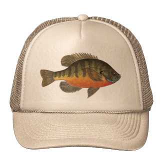 Bluegill Bream Mesh Hats