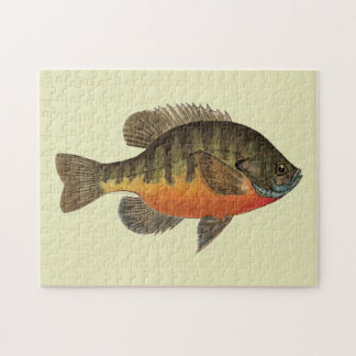 Bluegill Bream Jigsaw Puzzle