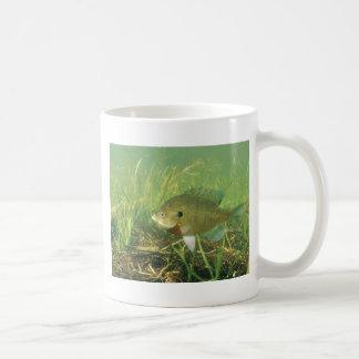 Bluegill Coffee Mug