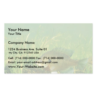 Bluegill Double-Sided Standard Business Cards (Pack Of 100)