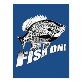 Bluegill fish on. black postcard