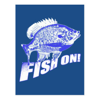 Bluegill fish on blue postcard