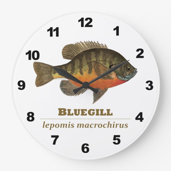 Bluegill Fishing Large Clock