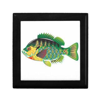 Bluegill Panfish Vector Jewelry Box