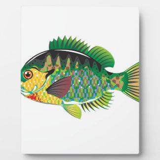 Bluegill Panfish Vector Plaque