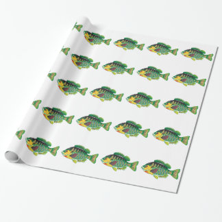 Bluegill Panfish Vector Wrapping Paper
