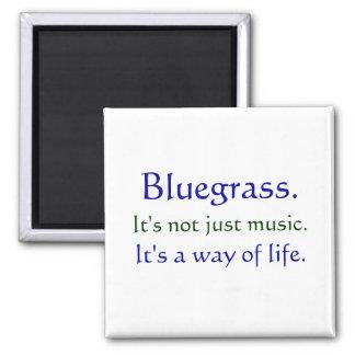 Bluegrass: Not Just Music, a Way of Life Fridge Magnet