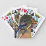 BLUEJAY 1 CARD DECK