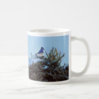 BlueJay and Fir Tree Mugs