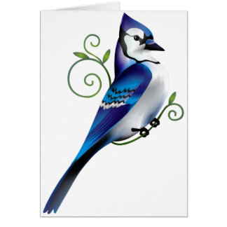 Bluejay Day Card