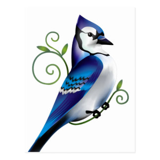 Bluejay Day Post Card