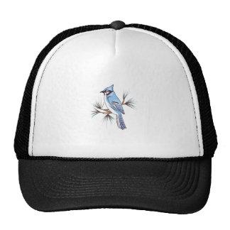 BLUEJAY MESH HATS