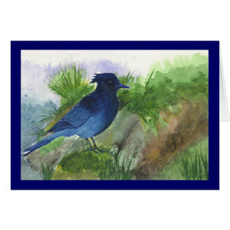 Bluejay In the Muskeg Cards