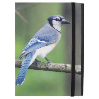 Bluejay iPad Case
