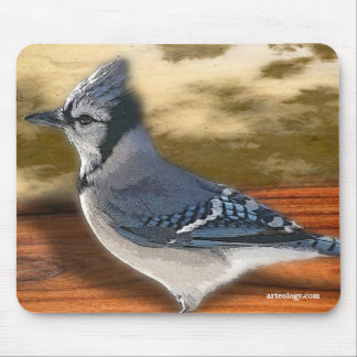 BLUEJAY MOUSE PADS