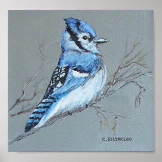 """Bluejay' print"