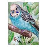 BlueParakeet Greeting Cards