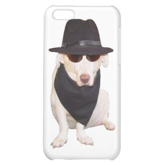 Blues Hound iPhone 5C Covers