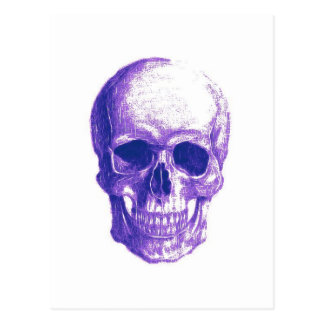 Blues skull postcard