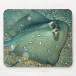 Bluespotted Stingray Mouse Pad