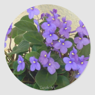 Bluest Blue Violets Classic Round Sticker