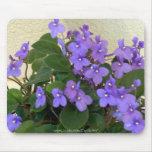 Bluest Blue Violets Mouse Pads