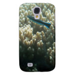 Bluestreak Cleaner Wrasse (Labroides dimidiatus) Galaxy S4 Cases