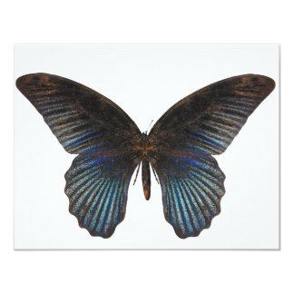 "BlueSwallowTail Butterfly 4.25"" X 5.5"" Invitation Card"