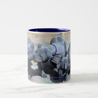 """""""BlueThai Ridgeback-Phu Quoc dog """" Two-Tone Coffee Mug"""